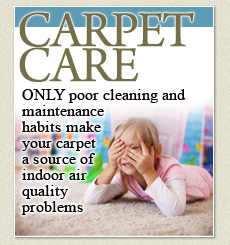 carpet & upholstery steam cleaning New York
